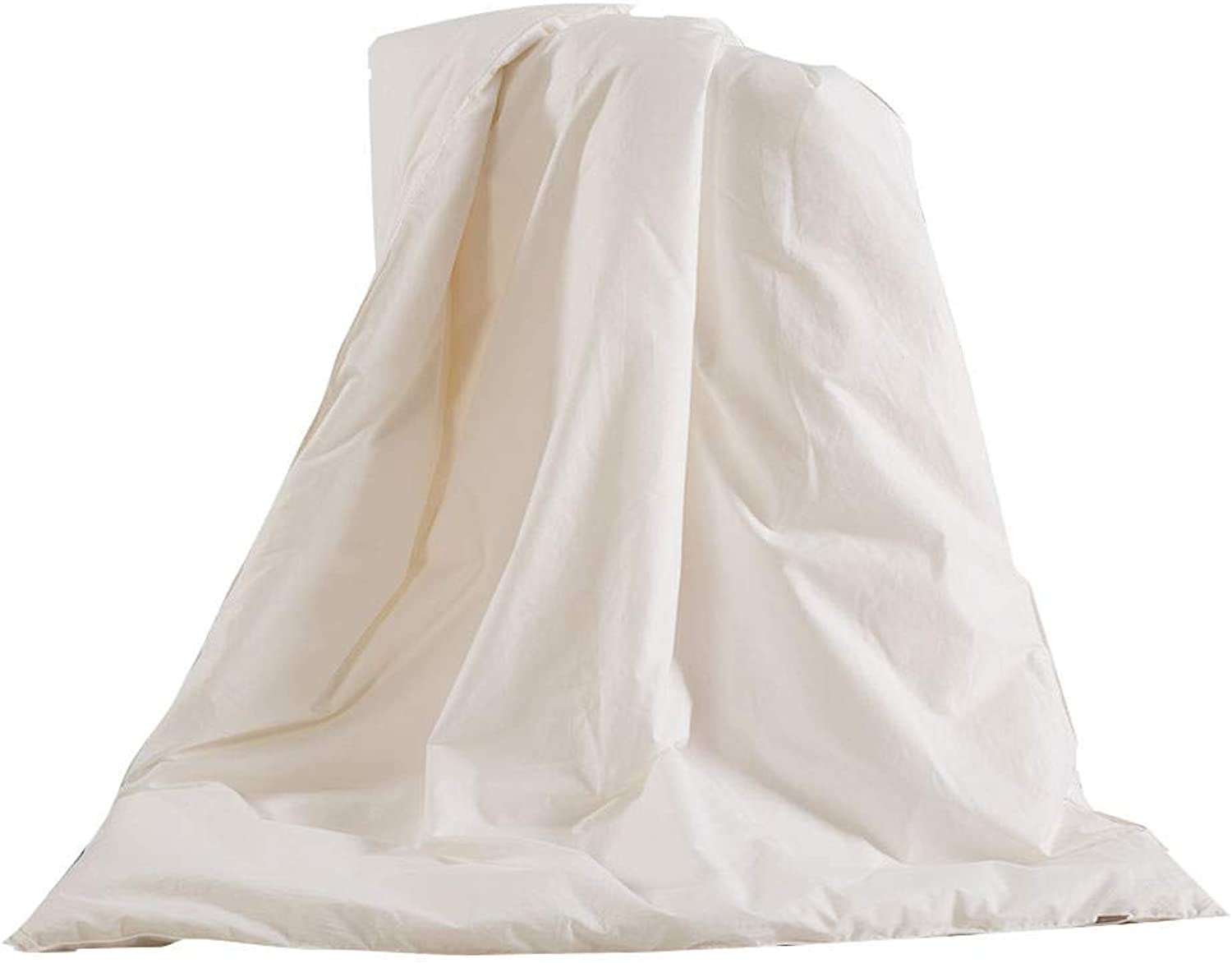 THXSILK 100% Mulberry Silk Duvet Comforter in White Cotton Shell for Baby Crib Toddler Bed for Spring and Fall, White