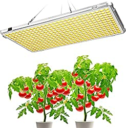 Bozily Oversized 300w LED