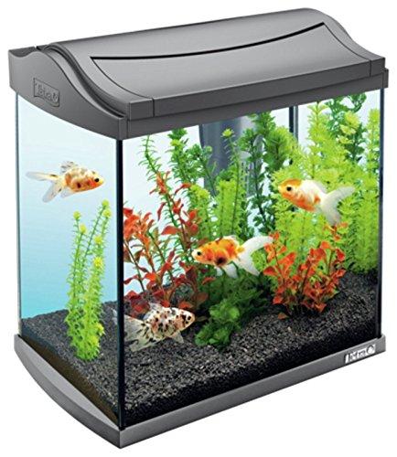 Tetra Aqua Art Aquarium, 30 l
