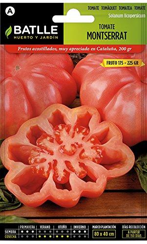 Semillas Hortícolas - Tomate Montserrat - Batlle