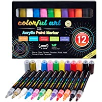 12-Count Colorful Acrylic Rock Painting Kit