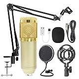 Yihaifu Estudio de grabación Cantando Kit del teléfono PC Mic Kit KTV KTV micrófono Red micrófono Plegable Soporte del Brazo, de Oro