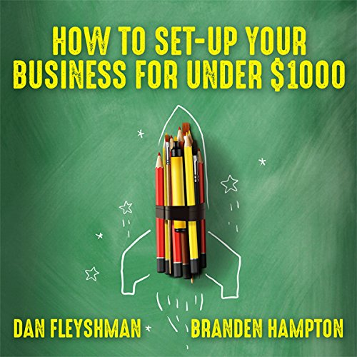 How to Set-Up Your Business for Under $1000 audiobook cover art