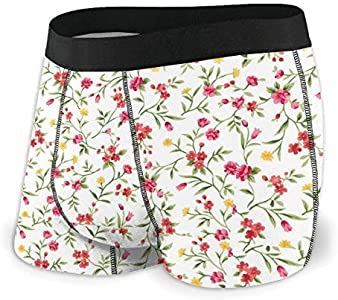 Yuanmeiju Mens Boxer Shorts Fitted Bragas Watercolor Floral Trunks Quick Dry Ropa Interior