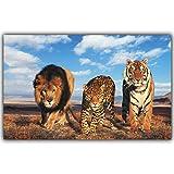 QWESFX León Tigre Leopardo Pintura Animal Pintura al óleo Pintada a Mano sobre Lienzo Pinturas de Lobo sobre Lienzo Impresiones del Arte Lienzo Grande (Imprimir sin Marco) A2 40x80CM