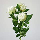 letaowl 4 cabezas de seda rosa artificial flores de tallo largo decoración de boda falso flores ramas de plástico con hojas decoración del hogar hotel blanco