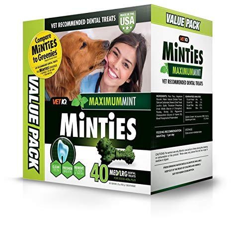 VetIQ Minties Dog Dental Bone Treats, Dental Treats for Dogs, Medium/Large, 32ounce (2 Packs)