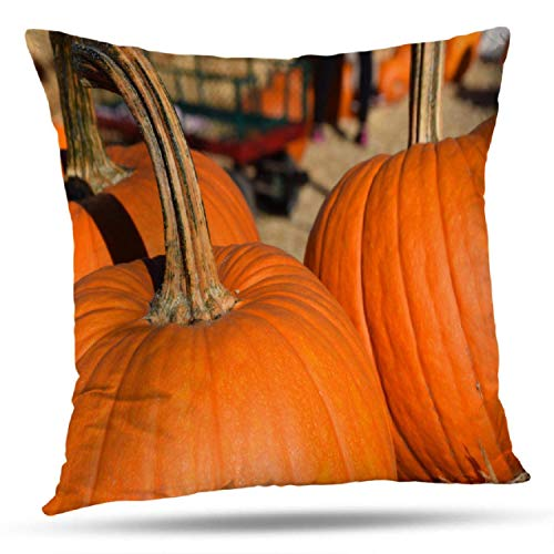 sodnz Throw Pillow Covers Herbst Kürbis Kürbisse Herbst Dirty Fall Farm Festliches Essen Halloween 45X45Cm Reißverschluss Office Throw Kissenbezüge Kissenbezug Home Decoration Couch Kis