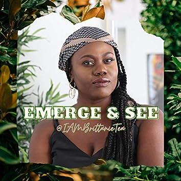 Emerge & See