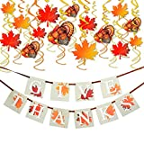"""PACKAGE INCLUDES - Each package includes 1pcs """"GIVE THANKS"""" banner; 15pcs hanging decorations with turkey, maple leaves and fall leaves and 20pcs hanging swirls. FUN FOR THANKSGIVING DAY - Creative Thanksgiving party themed party favor sets, a specia..."""