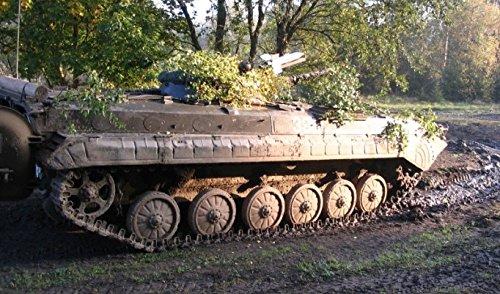 Panzer fahren BMP1-SP2 in Mahlwinkel