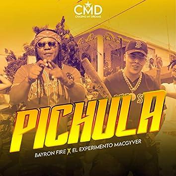 Pichula