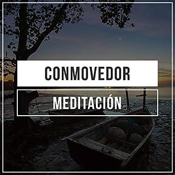 # 1 A 2019 Album: Conmovedor Meditación