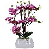 VIVILINEN Orquideas Artificiales en Maceta Flores Artificiales Plásticos Flor de Phalaenopsis Realistas Orquídea Mariposa con Maceta Cerámica Decoración Cálida para Hogar Dormitorio y Oficina (Rosa-2)