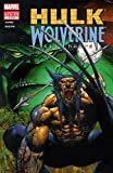 Hulk/Wolverine: 6 Hours (2003) #1 (of 4) (English Edition)
