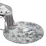 MJL Alfombra Redonda Degradado Antideslizante Mullida Pelo Largo Súper Suaves Tapete Lavable Estera de Felpa Decorativo para Salón Dormitorio Baño Sofá Cojín #2 S