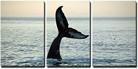 wall26 3 Piece Canvas Wall Art Fin of a Humpback Whale Modern Home Art Stretched and Framed product image