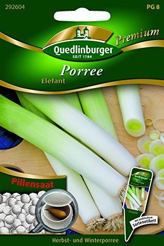 Pille Porree Elefant QLB Premium Saatgut Zwiebel und Lauch