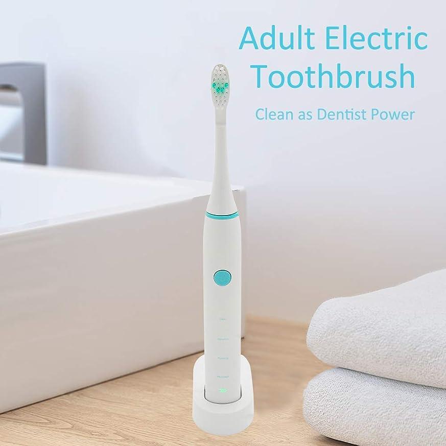 誘導後方に章Rakuby 家 旅行使用 2つブラシ 頭部付き 歯科医力 再充電 可能 防水 きれい 大人 電動歯ブラシ