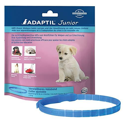 ADAPTIL Collar Ajustable Junior para Cachorros, Probado para Ayudar a Reducir el llanto Nocturno y dejarse en casa Solo, Entrenar y socializar.