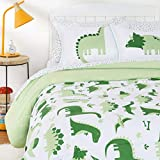 Amazon Basics Kids Easy-Wash Microfiber Bed-in-a-Bag Bedding Set - Full/Queen, Dinosaur Squad