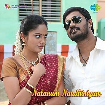 Nalanum Nandhiniyum (Original Motion Picture Soundtrack)