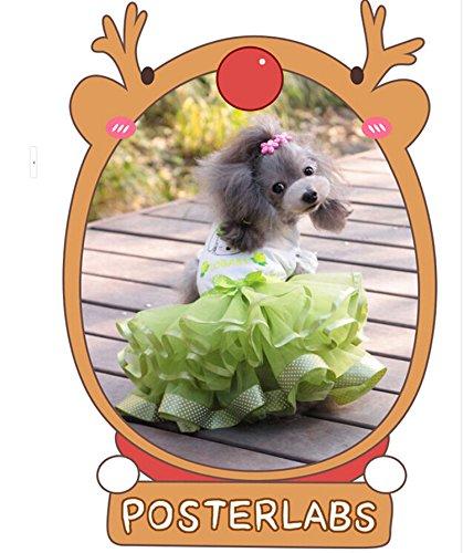 犬服 ふわふわワンピース チュールスカート コスチューム 着ぐるみ お嬢様オシャレワンピース かわいいちょう結び 犬洋服 ドッグウエア いぬ服 グリーン (L)