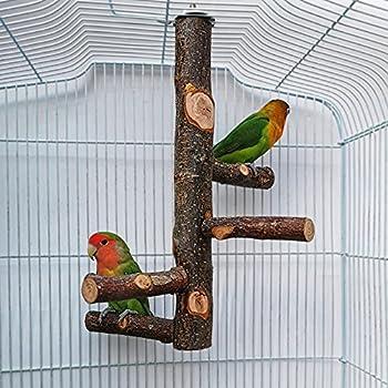 QeeHeng Perchoir en bois naturel pour perroquet, cage à oiseaux, perchoirs pour cage à oiseaux pour perroquets, petites perruches, calopsittes, aras, perroquets, oiseaux inséparables, pinsons