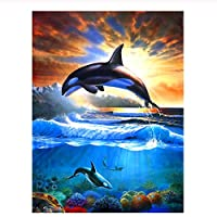 Diy Oil Painting Drawing with Brushes Paint Paint by Number Kit for Adults Decoration 動物のイルカ-16x20インチ(diyの木製フレーム)