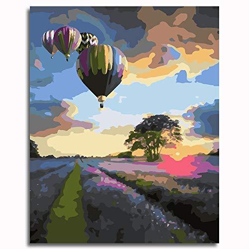 por Números con Pinceles y Pinturas globo aerostático Pintura de lienzo de arte de pared-16x20 inch (40x50cm)Enmarcado madera