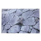 DAUERHAFT Adhesivo Decorativo de Fondo de Roca HD, Adhesivo de póster, decoración de Papel de Pared de Fondo de Paisaje para pecera, Acuario, Caja de Reptiles para Mascotas PVC(76 * 46 cm)