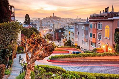 Papermoon Lombard Street in San Francisco Vlies Fotobehang 500x280cm 10-Banen