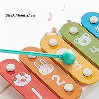 LVJUNQ 8 Note Xilofono per Bambini Classico Durevole con Campane per Viti Doppi Tamburi, Aiuto per sintonizzare Il coordinamento Occhio-Mano e abilità motorie Fini, Utilizzare per Principianti #4