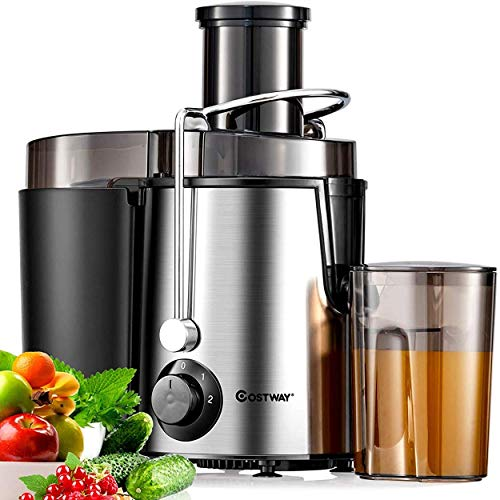 COSTWAY Juicer Machine with Wide Feed Chute, Dual Speed Mode & Overload Protection, Stainless Steel Centrifugal Juice Extractor for Fruit and Vegetable, BPA-Free