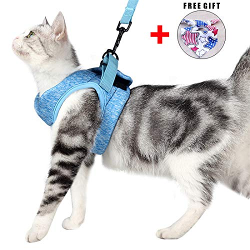 Katzengeschirr Set mit Leine für Autofahren & Spaziergang, zum Gehen 360 °Katzenleine mit Geschirr für Katzen Kitten Katzengarnitur Kleine Katze Cat Harness Kaninchen mit kationischem Stoff (L, Blau)