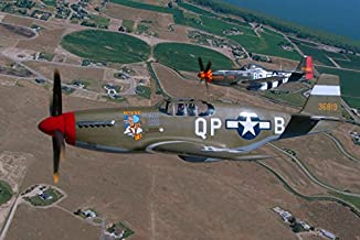 Posterazzi Poster Print Collection P-51C P-51D Mustang Flying Over Boise Idaho Phil Wallick/Stocktrek Images, (17 x 11), M...