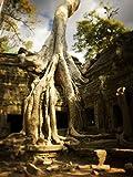 The Poster Corp Huy Lam/Design Pics – Angkor Wat;