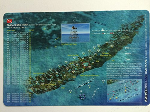 Innovative Scuba Concepts New Art to Media Underwater Waterproof 3D Dive Site Map - Molasses Reef in Key Largo, Florida (8.5 x 5.5 Inches) (21.6 x 15cm)