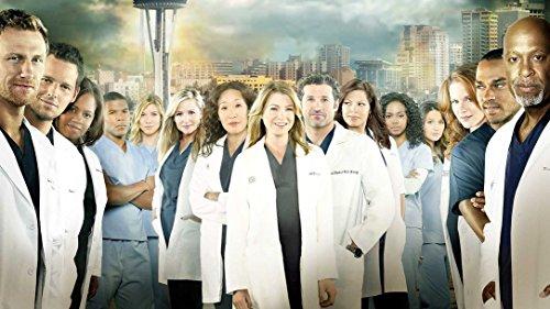Zole Xap Greys Anatomy Season 10   25inch x 14inch   Silk Printing Poster 032