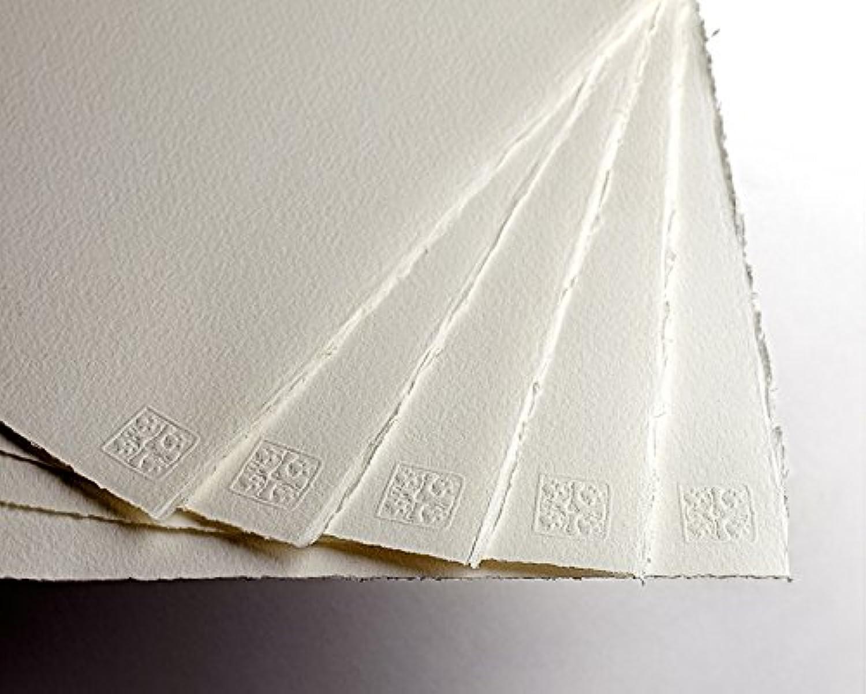 20 Sheets Saunders Saunders Saunders Waterford 300gsm (140lbs) NOT 1 4 imperial (28x38cm 11x15 ) B00Y1BVJ72 | Fein Verarbeitet  6c67d7