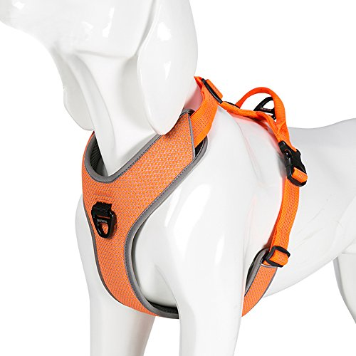Chai's Choice Best New Outdoor Adventure No-Pull Dog Harness. 3M Reflective Vest with Handle and 2 Leash Attachments. Please Use Sizing Chart at Left Before Ordering. (Medium, Orange)