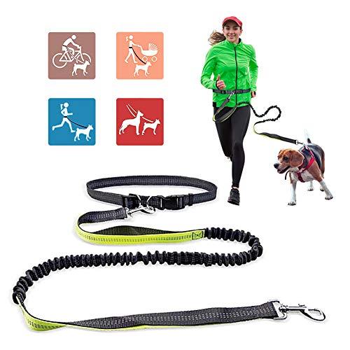 Jogging Hundeleine, Hands Free Hundeleine mit verstellbarem Hüftgurt, Jogging Handfrei Lange Nylon Hundeleine zum Joggen, Laufen Wandern, freie Kontrolle für einen / zwei mittelgroße bis große Hunde