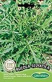 Germisem Rucola Selvatica Semillas de Rúcula 2 g, EC7002