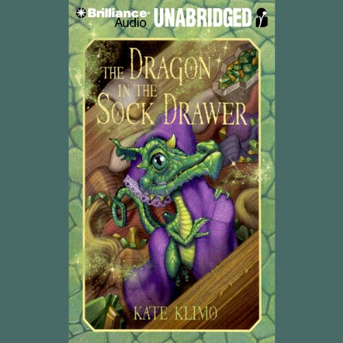 The Dragon in the Sock Drawer audiobook cover art