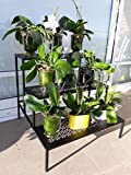 Swish 3 Level Potplant Display Stand with Metal Frame and Perforated Metal Shelves for Indoor or Outdoor Use, Patio, Balcony, Terrace or Garden