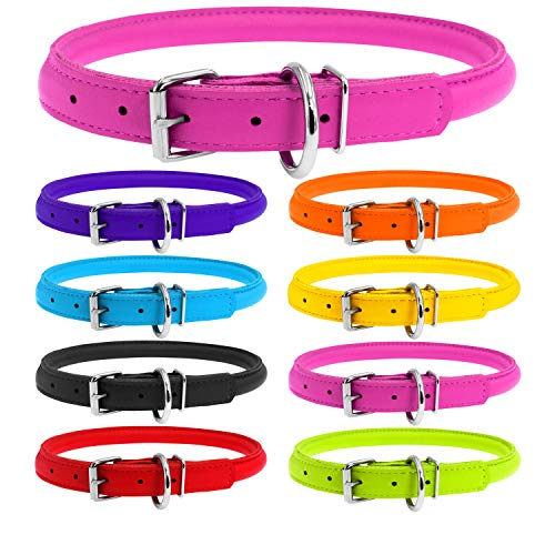WAUDOG Rolled Leather Puppy Collar for Small Dogs...