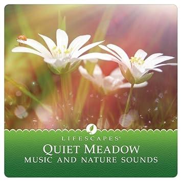 Quiet Meadow