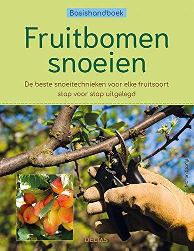 Fruitbomen snoeien: De beste snoeitechnieken voor elke fruitsoort stap voor stap uitgelegd