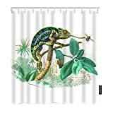 Moslion Animal Bathroom Shower Curtain Chameleon Eating Bugs Lizard with Tree Leaves Grass Shower Curtains Home Waterproof Long Polyester Fabric Shower Curtain with Hooks 72x72 Inch Green