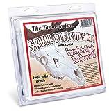 The Tannery Skull Bleaching Kit